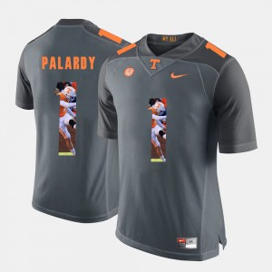 UT VOL #1 For Men's Michael Palardy Jersey Grey Embroidery Pictorial Fashion 849073-303