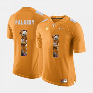 Tennessee #1 For Men Michael Palardy Jersey Orange Player Pictorial Fashion 531250-286
